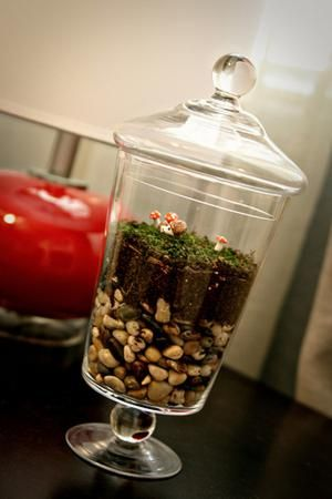 These cute and clever DIY ideas will drive you - and your nursery theme - wild.: Fairy Terrarium