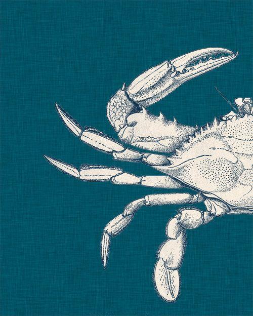 LINEN BLUE CRAB Print Set Nautical Art by theNATIONALanthem