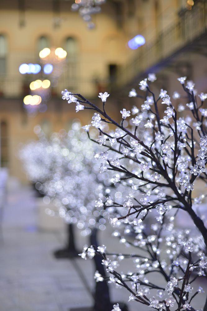 Cherry Blossom LED Glow tree