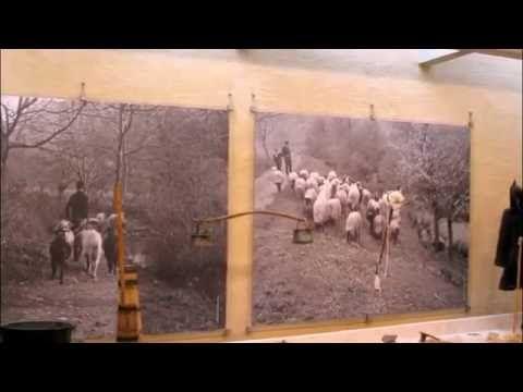 Экологический музей Стимфалия #Греция #Пелопонес