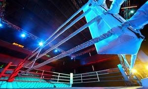 Groupon - Ticket Resale Marketplace: WWE Raw in Consol Energy Center. Groupon deal price: $40