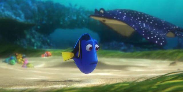 """Nuevo trailer de """"Buscando a Dory""""... Conoce un poco de lo nuevos personajes !!!"""