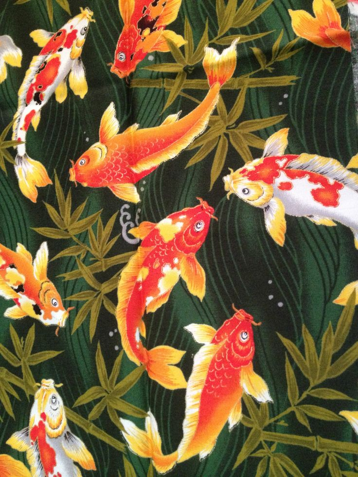23 best images about koi on pinterest for Koi fish print fabric