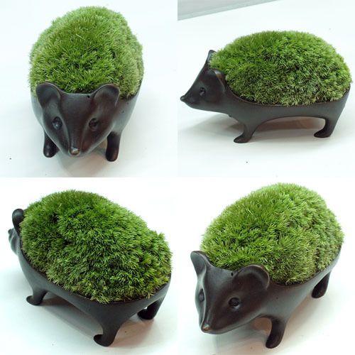 Amazing little ceramic Hedgehog planters - 苔盆栽はりねずみブロンズ製/アラハシラガゴケ http://porcelainspinner.tumblr.com/