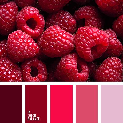 Raspberries are my favorite! Color Palette #3146 | Color Palette Ideas | Bloglovin'