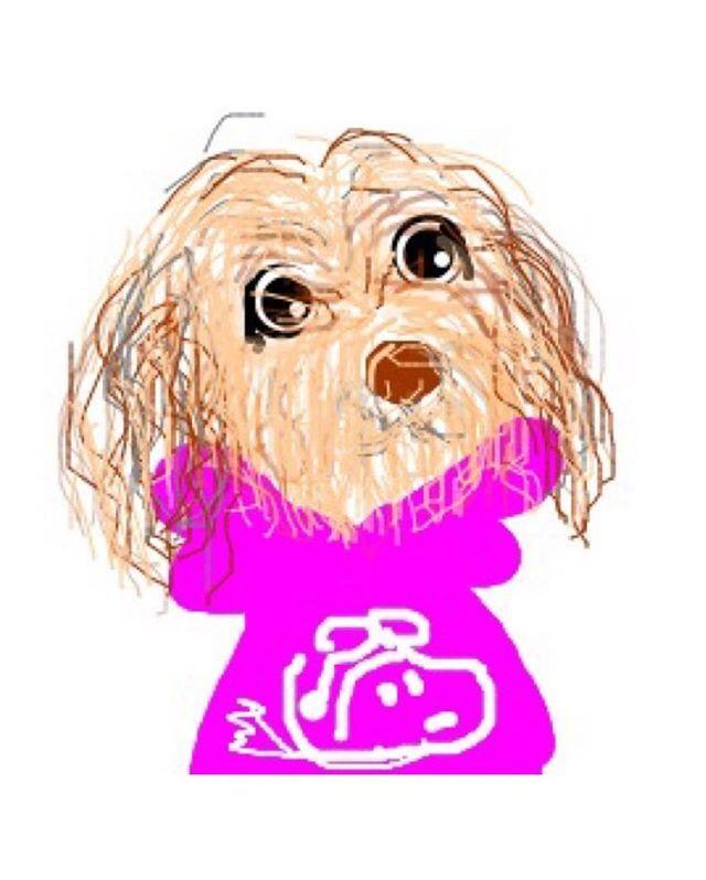 今日は11月1日 🐾U・x・U🐾 * * ワン ワン ワン で犬の日なんだって〜🐶 * * @1234commune とっても可愛いイラスト描いているしののめちゃん❤️ * * しののめちゃんのパーカーシリーズが大好きでまさか愛犬アッシュがフライングエースのピンクのパーカーを着ている💖💖💖💖💖 見た時 え。。!(◎_◎;)🙌🙌🙌 もしや⁉️アッシュ⁉️ って… まさかの本当にアッシュを描いてくれて〜😭😭😭 嬉しくて可愛くて〜☀️🌈☀️ * * 今月3歳になるアッシュ🐾 素敵な記念になりました *  しののめちゃん本当にありがとう💖 * * #愛犬 #いぬ部 #イラスト #しののめちゃん #嬉しすぎます #今日は犬の日 #素敵記念日