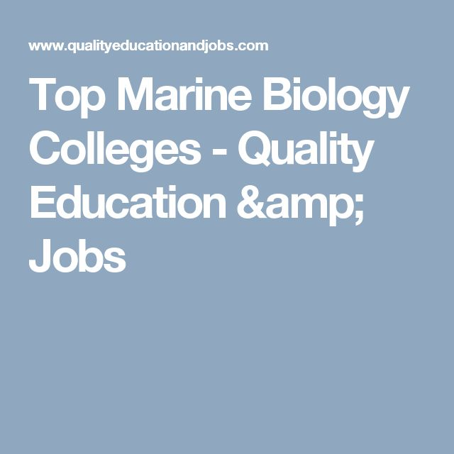 Top Marine Biology Colleges - Quality Education & Jobs