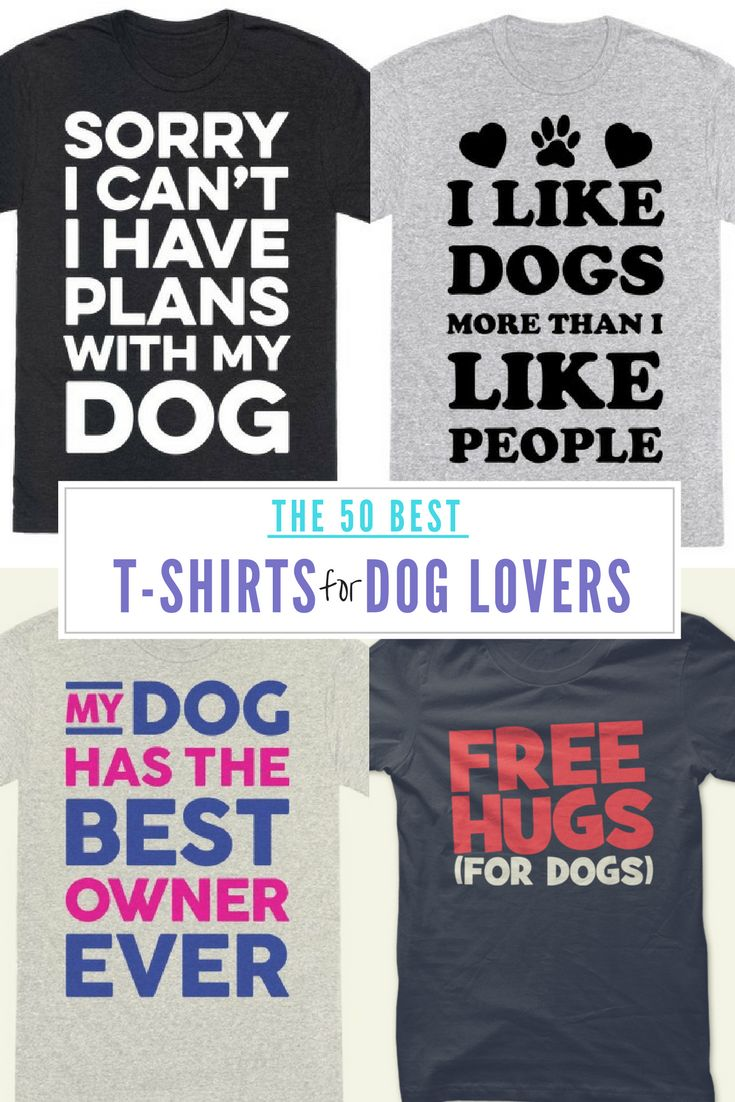 Don't miss our HUGE list of t-shirts for dog lovers so that you can display your affection proudly! These hilarious shirts are sure to grab some attention!