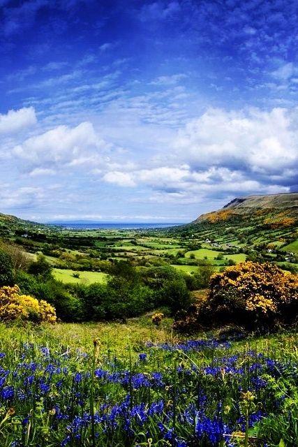 County Antrim                                                       …