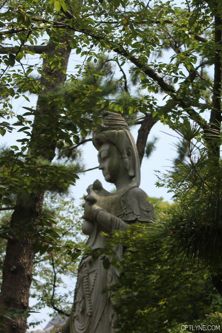 Zozoji Shrine  Tokyo  Guide What to see, what to do and what to eat, basically everything you need to know about the busy city of Tokyo, Japan. #Tokyo #Japan #travel
