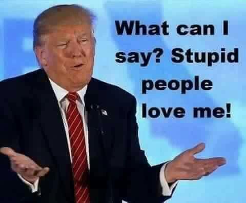 bdfd80ac89c1a99a6acfba435bd521ca--trump-funny-trump-quotes.jpg