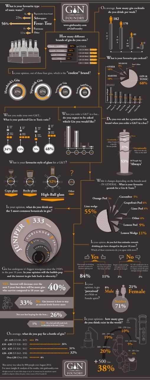 Ginfographic by the Gin Foundry
