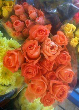 oranžové princezny (48 pieces)