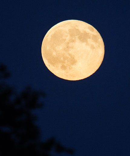 """How To See Tonight's Extremely Rare """"Strawberry Moon"""" #refinery29  http://www.refinery29.com/2016/06/114452/strawberry-moon-summer-solstice-viewing-guide"""