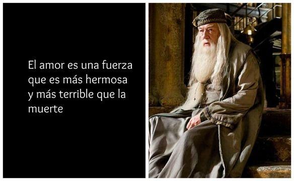 10 frases que Albus Dumbledore que aunque no seas fan de Harry Potter tienes que leer — cribeo