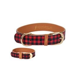 Canine – Friendship Collar