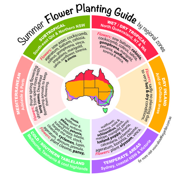 Summer Flower Planting Guide by regional zones Australia    great quick reference for what flowers to sow for Autumn & Winter colour!