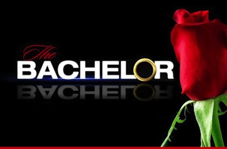 """20 Of The Funniest """"The Bachelor/The Bachelorette"""" Contestant Jobs"""