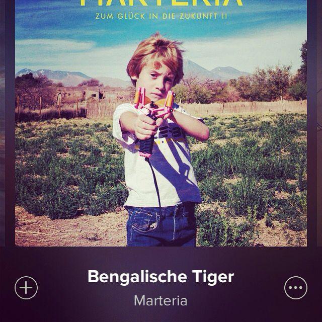 Bengalischer Tiger #marteria