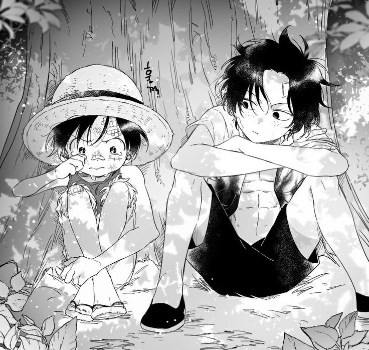 One Piece | Luffy and Ace | children