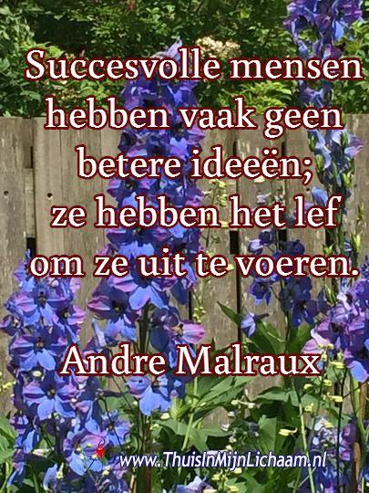 Succesvolle mensen hebben vaak geen betere ideeën; ze hebben het lef om ze uit te voeren.  Andre Malraux