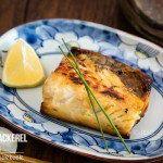 Grilled Mackerel with Shio Koji 塩麹の鯖の塩焼き