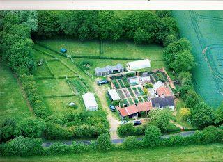 One homestead acre pdf