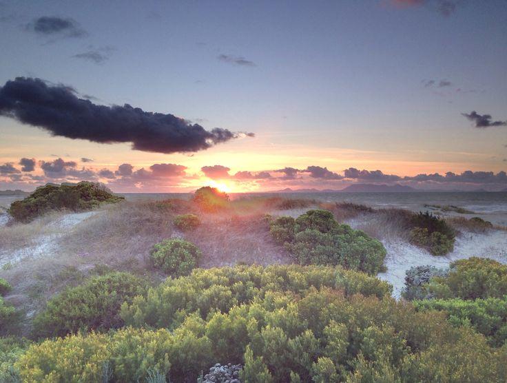 Pringle Bay beach, South Africa (photo A. Jacobsen)