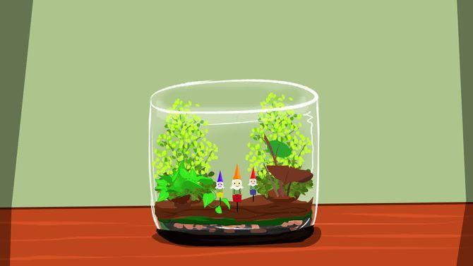 Comment réaliser un terrarium