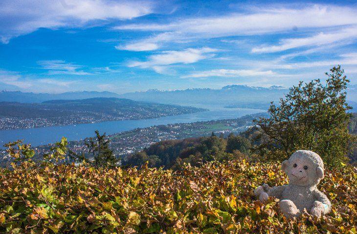 Zürich, Switzerland - Footsteps of Jim