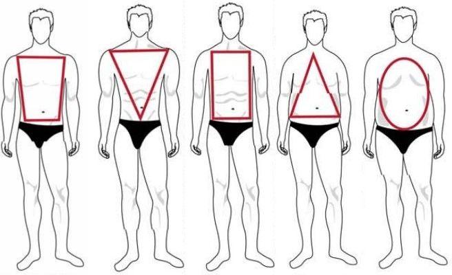 tipos de corpo, corpo oval, corpo quadrado, corpo triagulo, triangulo invertido…