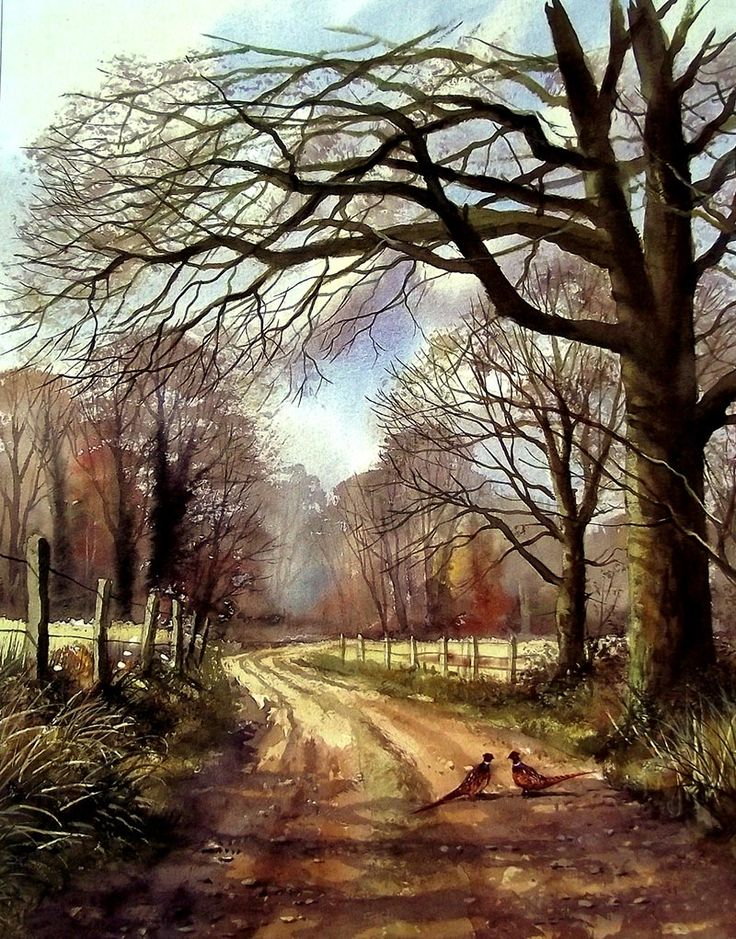 Paisaje de Terry Harrison