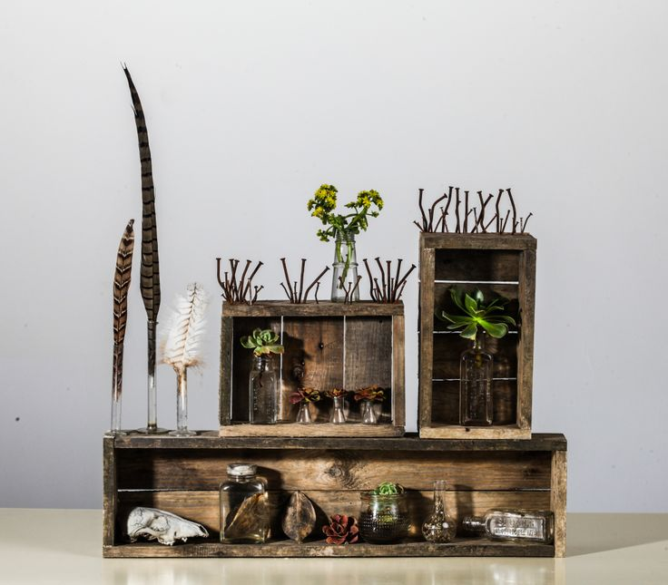 A Curious Collection - Dylan Rose   Found & Manipulated Objects
