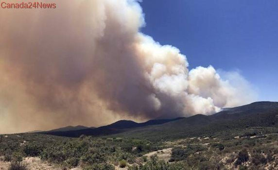 Arizona man arrested for flying drone over wildfire, hindering firefighting aircraft