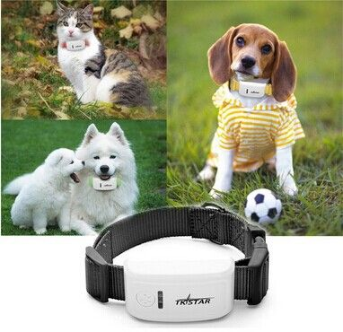 New super mini TK909 waterproof tracker long standby time dog cat Pet personal gps tracker/IOS /Andriod App free website service