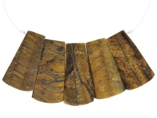 Tiger's Eye Apx 38x18mm-36x20mm Irregular Rough Fan Shape 5 Piece Stra