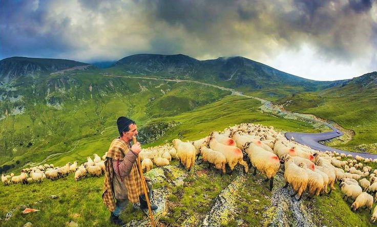 Transalpina - Munții Parâng  Parâng Mountains - Romania