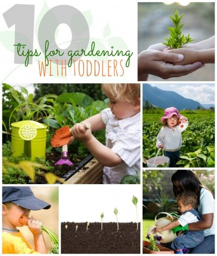 Gardening With Toddlers: 10 Tips. Great ideas and a resource for parents!