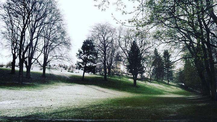Snow in April #Oslo http://ift.tt/2okin7P