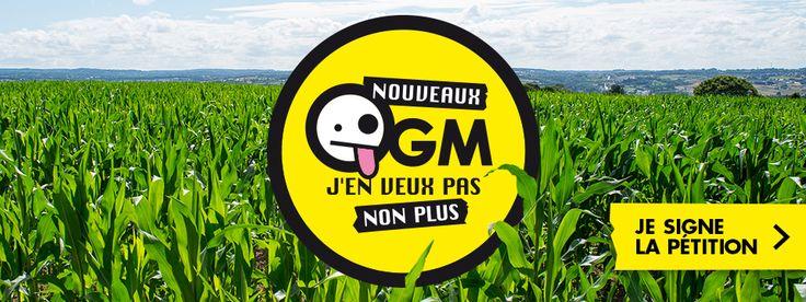 http://www.greenpeace.org/france/fr/
