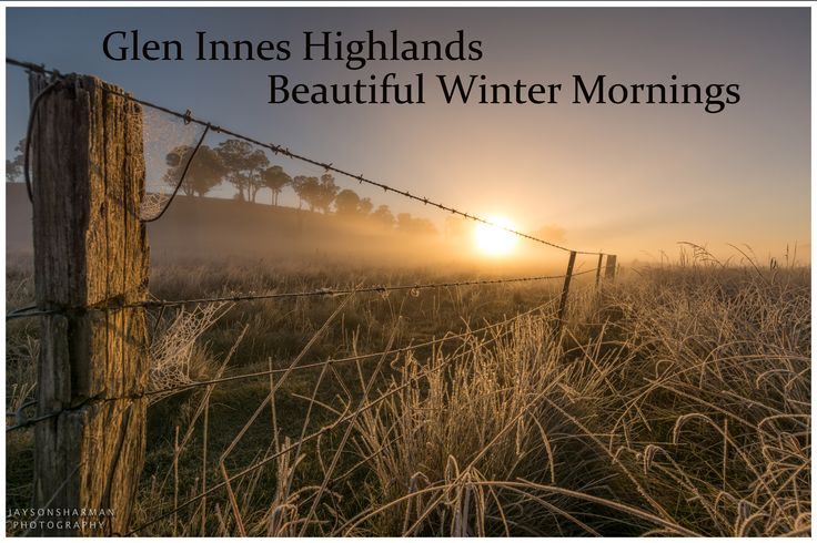 Beautiful Chilly Mornings in Glen Innes.  Photo by Jayson Sharman