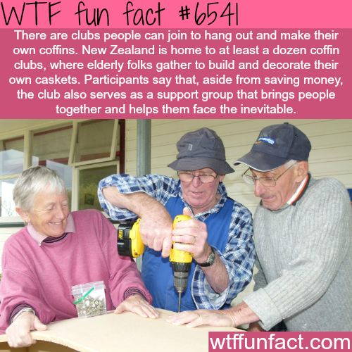 kiwi coffin club - WTF fun facts