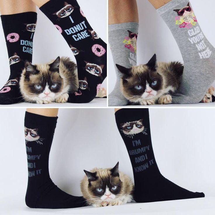 1013 best grumpy cat images on pinterest