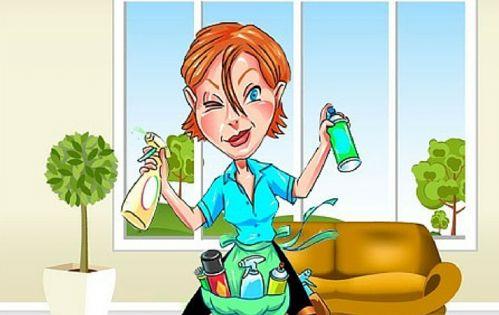 Un pulitore tutto al naturale per vetri e specchi di tutta la casa. spruzzare sulla parte e asciugare con un panno morbido.