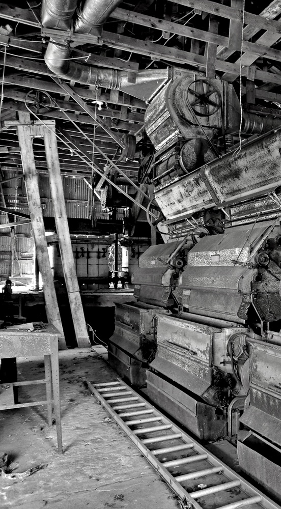 The Cotton Gin's were invented by Eli Whitney in 1793 for it to help reduce labor but it actually increased it.