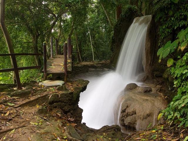 Agua Selva