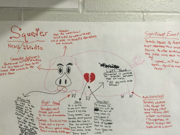 characterization of animal farm characters squealer How that the character either uses or responds to specific propaganda  techniques in the book animal farm choices: old major, moses, boxer,.