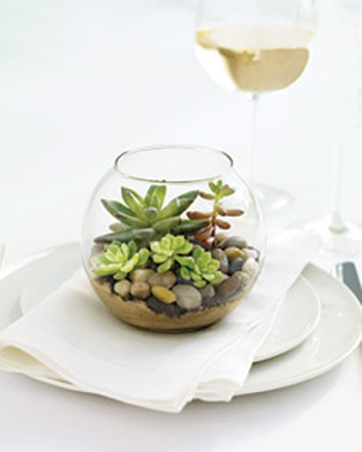 terrariums are perfect for creating a unique centerpiece on any table.