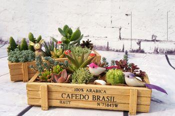 Zakka деревянный ящик деревянный ящик для хранения швейные Box ремесла деревянные ящики небольшой бесплатная доставка цветочные горшки цветочные горшки BKH-002