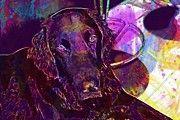 """New artwork for sale! - """" Dog Black Retriever  by PixBreak Art """" - http://ift.tt/2v8ucAY"""